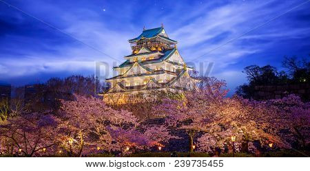 Himeji Castle In Osaka With Full Bloom Of Sakura In Japan At Night, This Immage Can Use For Travel C