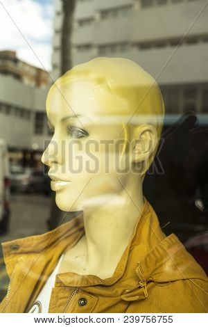 Womens Fashion Shop Window