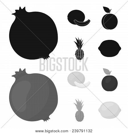 Melon, Plum, Pineapple, Lemon.fruits Set Collection Icons In Black, Monochrom Style Vector Symbol St