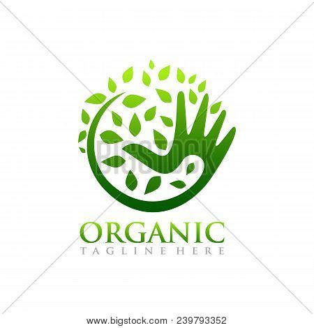 Organic Logo. Leafs In Hand Logo. Natural Products Logo. Cosmetics Icon. Spa Logo. Beauty Salon Logo