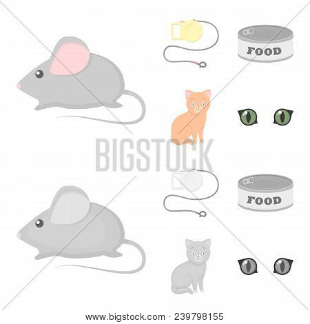 Mouse, Pet Leash, Pet Food, Kitten. Cat Set Collection Icons In Cartoon, Monochrome Style Vector Sym