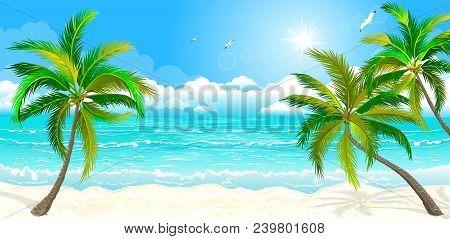 Landscape Of The Tropical Shore. The Landscape Of The Sea Shore With Palm Trees. Sea Shore With Palm