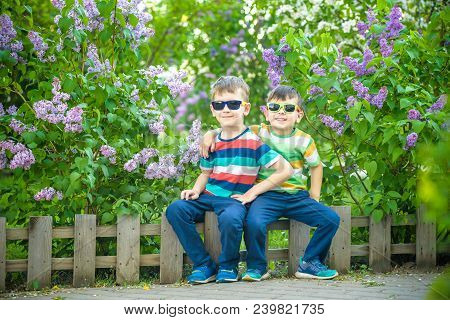 Portrait Of Two Little Brothers Sitting On Small Fence In Bushes Of Lilac Wearing Casual Style Cloth