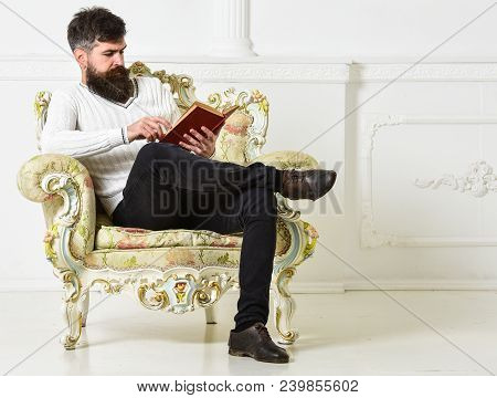 Man With Beard And Mustache Sits On Armchair And Reading, White Wall Background. Connoisseur Of Lite