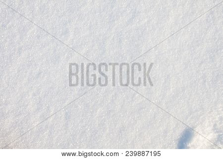 Top View Of Fresh Snow. Snow On The Ground. Pure Snow Texture. Clean Snow Under Morning Sun