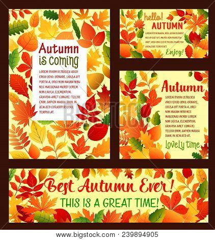 Hello Autumn Posters And Banners Template For Fall Is Coming Greeting Card Or Seasonal Sale Design.
