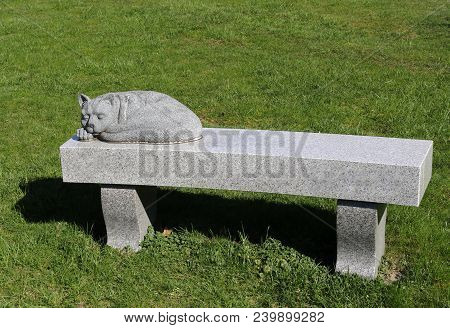 A Cat Statue Resting Forever On A Bench In The Sunlight.