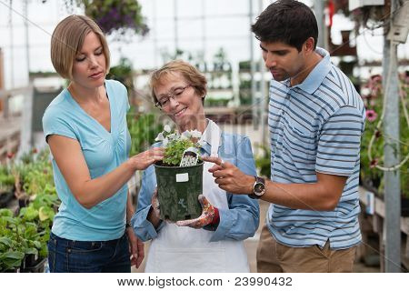 Man and woman shopping for plants