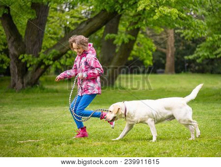 Little Girl With Labrador Retriever On Walk In Park. Child Is Running On Green Grass With Dog - Outd