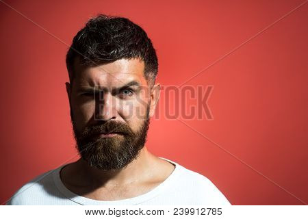 Stylish Bearded Man Serious Looking In Camera. Handsome Hipster With Trendy Hairstyle, Beard And Mus
