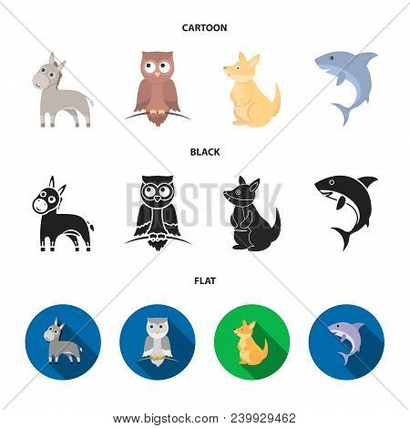 Donkey, Owl, Kangaroo, Shark.animal Set Collection Icons In Cartoon, Black, Flat Style Vector Symbol