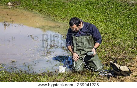 Scientist Measuring Environmental Water Quality In A Wetland Using A Multi-parameter Probe