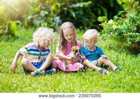 Kids Play With Cute Little Puppy. Children And Baby Dogs Playing In Sunny Summer Garden. Little Girl