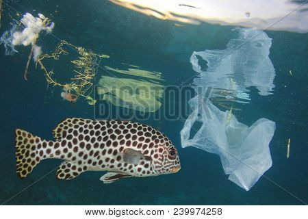 Fish in polluted sea. Plastic pollution contaminates seafood