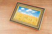 Wheat field in the picture frame poster