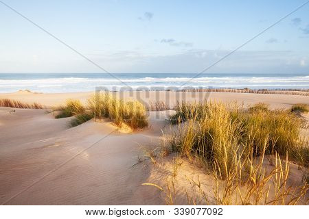 Sand Dunes And Ocean At Sunny Morning, Pensacola, Florida.