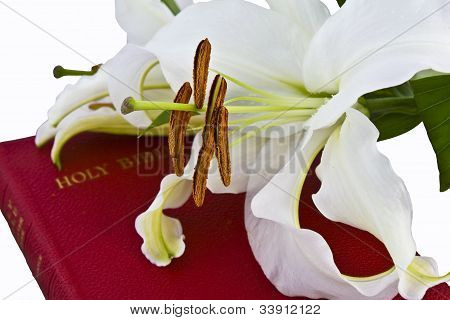 Lillies On Christian Bible