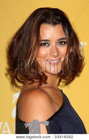 LOS ANGELES - JUN 12:  Cote de Pablo arrives at the City of Hope's Music And Entertainment Industry Group Honors Bob Pittman Event at Beverly Hilton Hotel on June 12, 2012 in Beverly Hills, CA