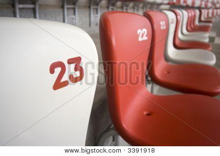 Seats At The Bird's Nest
