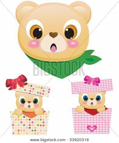 Cute Teddy Bears In Boxes