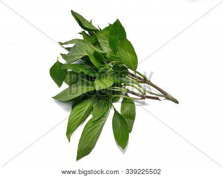 Top View Of Leaves Sweet Basil Or Thai Basil Isolated On White Background. (horapa,ocimum Basilicum