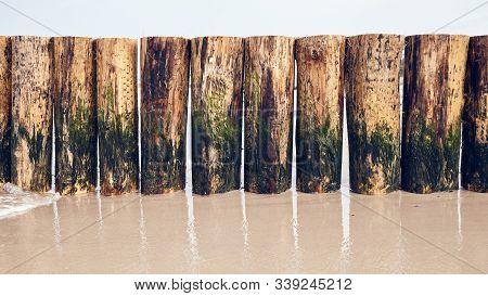 Wooden Groyne Partlially Covered With Algae On A Beach