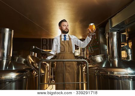 Handsome, Bearded Brewery Expert Holding Glass With Beer And Looking. Brewery Worker Standing Near E