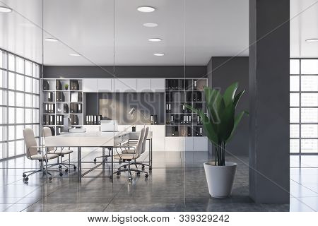 Gray Ceo Office With Bookcase And Hall