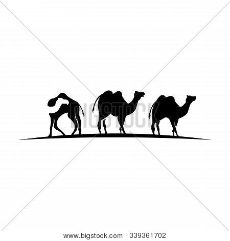 Silhouette Of Camel And Young Small Camel,vector Camel