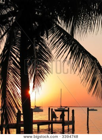 Tropical Sunset Over The Water With Palm Tree Silhoutte