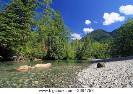 Mountain Creek In Summer