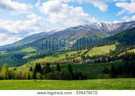 Mountainous Countryside Landscape In Spring. Grassy Meadow On Top Of A Hill. Mountain Ridge With Sno