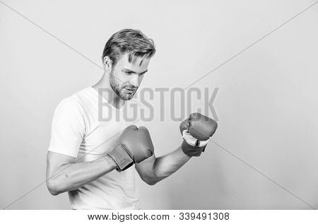 Man In Boxing Gloves. Sport And Sportswear Fashion. Fight. Knockout And Energy. Sport Success. Boxer