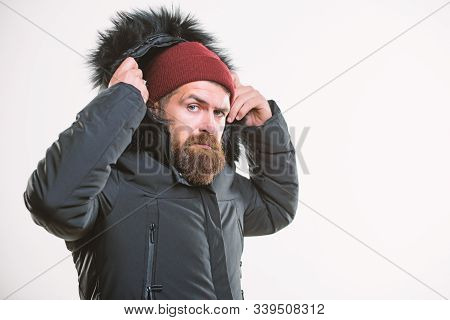 Hood Adds Warmth And Weather Resistance. How To Choose Best Winter Jacket. Man Bearded Stand Warm Ja