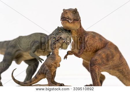 Family Of Tyrannosaurus Rex With Baby Tyrannosaurus Rex Isolated On White Background. Family Concept