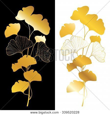 Vector Golden Branch Silhouette Of Gingko Or Ginkgo Biloba Tree. Bunch With Leaf In Gold Isolated On