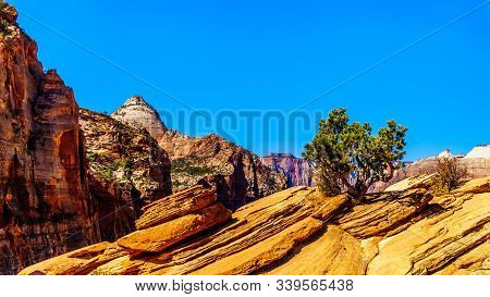 The Mountains Surrounding Zion Canyon Viewed From The Top Of The Canyon Overlook Trail In Zion Natio