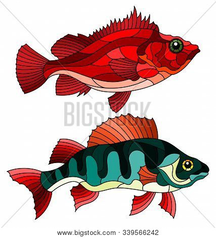 A Set Of Illustrations In Stained Glass Style With River Bass And Sea Bass, Isolated On A White Back
