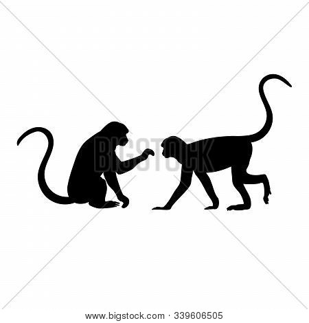Silhouette Of Two Monkey. Monkey Family. Vector Illustrator