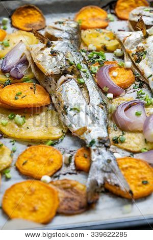 Baked Fish Bluefish With Sweet Potatoes On Oven Tray With Baking Paper Sheet / Lufer.