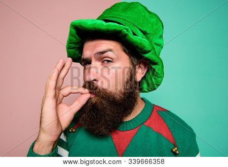 Just Perfect. Christmas Elf. Elf Concept. Happy Celebration. Bearded Elf. Winter Carnival. St Patric
