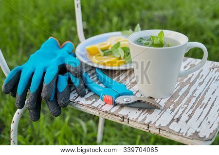 Close-up Of White Vintage Chair On Green Grass In Garden. With Garden Secateurs Pruner, Gloves, Cup