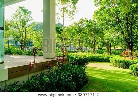 Designed A Beautiful Shady Landscape Garden., Green Lawn, The Sunshine In The Evening Shines Through