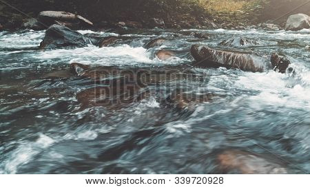 Wild Mountain River Close Up Abundant Clear Stream. Detail Static Shot of Babbling Creek with Stone Boulders Flowing. Rock Rapid in Swift Splashing Water. Ukraine, Carpathian.