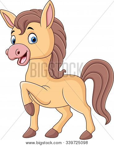 Vector Illustration Of Cute Baby Pony Cartoon Isolated On White Background