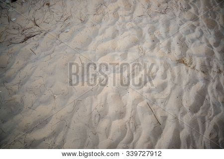 Sand On The Beach With Some Limbs And Stick, For The Background