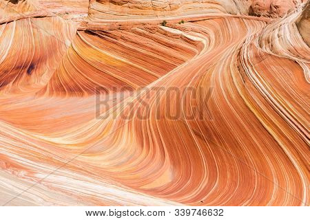 The Wave is an awesome vivid swirling petrified dune sandstone formation in Coyote Buttes North. It could be seen in Paria Canyon-Vermilion Cliffs Wilderness, Utah. USA