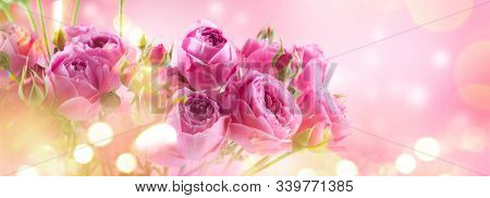 Pink Roses bouquet, blooming roses. Rose flowers bunch art design, nature. Holiday gift, Bunch of roses flower. Pastel colours. Holiday backdrop, birthday, wedding bouquet. Valentine's Day card design