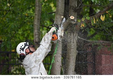 Lumberjack Works With A Chainsaw. Climber On A White Background. Cuts Branches With A Chainsaw And T