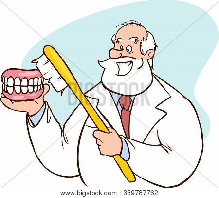 Caucasian Dentist Showing A Dental Jaw Model And A Toothbrush. Old Man Dentist Holding A Dental Jaw